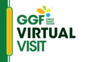 Read more about the article Teknologi Pangan ITERA Melakukan Kunjungan Industri Virtual ke Great Giant Food